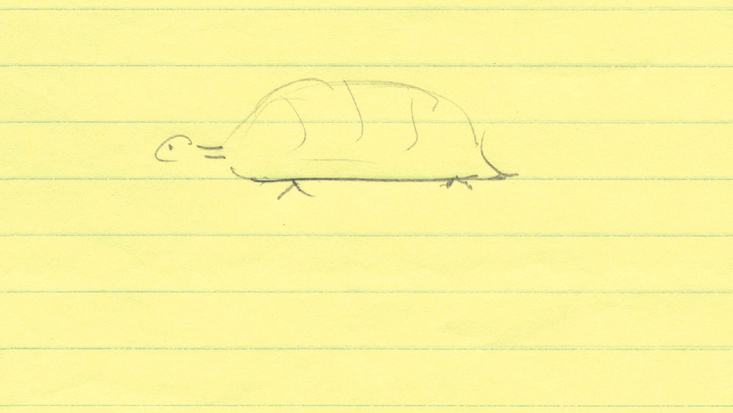 Roald Dahl's sketch of a tortoise for an early draft of Esio Trot