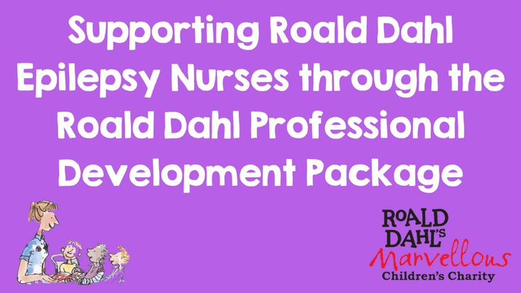 roald dahl professional development package