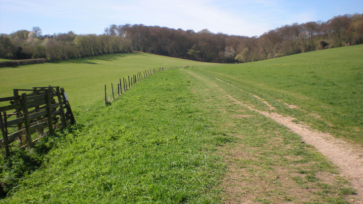 The Chilterns, view on the Countryside Trail